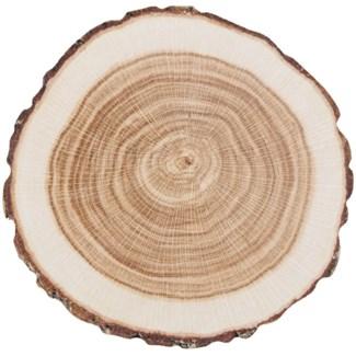 Coasters paper tree trunk set/10 - 3.94x3.94x0.2
