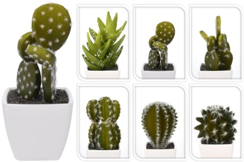 319000010 Cactus Plant Pot 6 Assorted Designs, 2.1x2.1x1.9