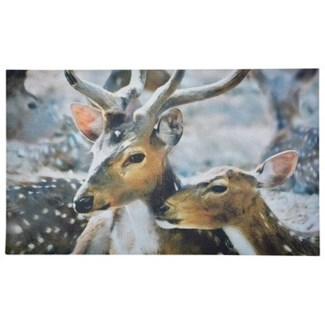 Doormat deer winter. Recycled Crumb Rubber, non woven polyester. 0.2x30x17.7inch. FD ON SALE 30 per