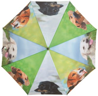 Umbrella dogs - (47.2x47.2x37.4 inches)