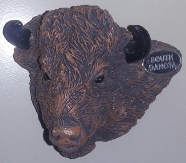 South Dakota Buffalo Magnet