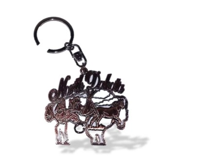ND Cut-Out Shape Metal Key Ring