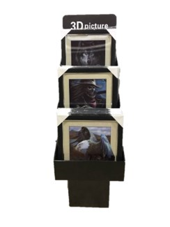 5D Picture Display