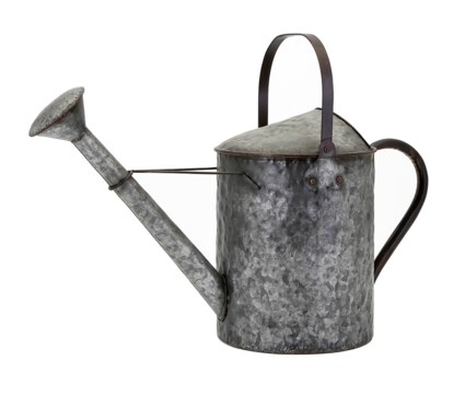 Darnell Galvanized Decorative Watering Can