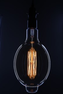 Oversize Vintage Bulb with Fabric Pendant Light