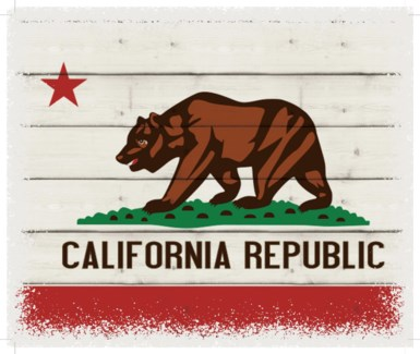"Calfornia Flag - White background 10"" x 12"""