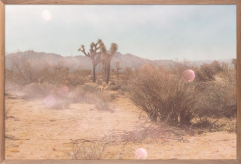 Created for Selamat this photographic desert landscape by ZBC artist Sabina is populated by Josh...
