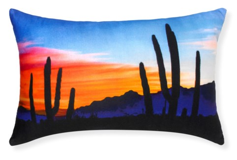 Rapee Arizona Multi Pillow 16x24