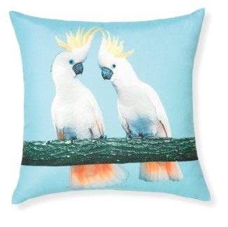 Rapee Riviera Cockatoo Aqua Cushion 18x18 (Outdoor)