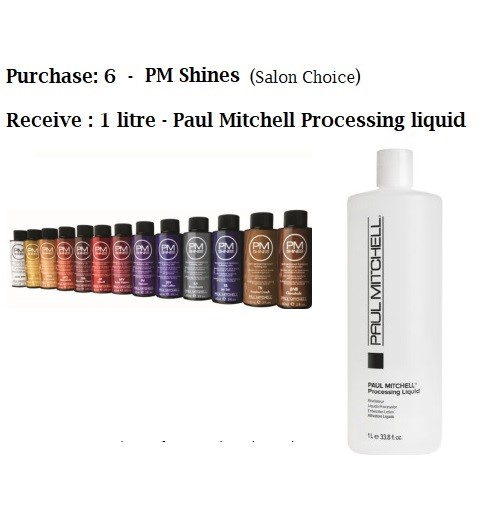 Pm Shine Color Chart Uclu Lessecretsdeparis Co