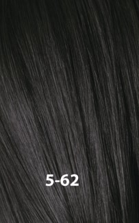 SC ESSENSITY COLOR 5-62 60ML