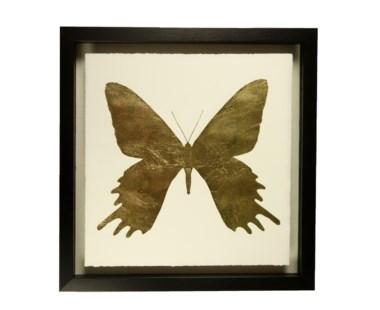 Butterfly - B