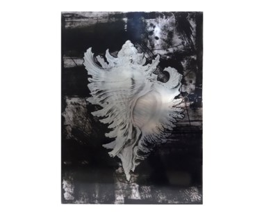 Haeckel Shell - A