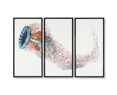 Jelly Fish TriptychMedusa