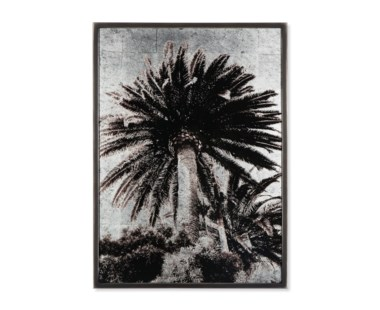 Venice Palm Trees - Silver Leaf