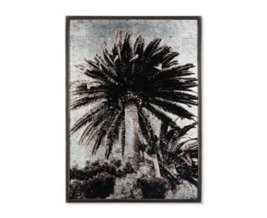 Venice Palm Trees - Silver Leaf
