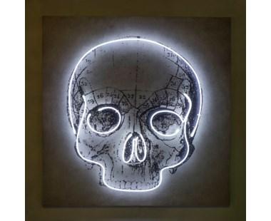 Neon Skull