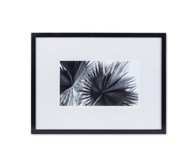 Black & White Palm Leaves - B