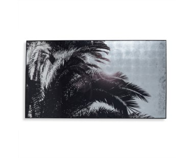 Silver Leaf Palm Tree - A