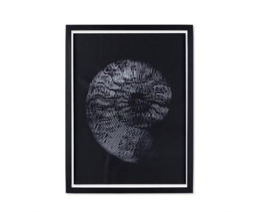 Ammonite - ?
