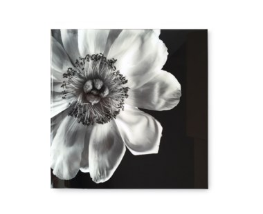 Black & White Flower - Acrylic Dry Mount / D