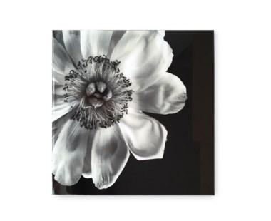Black & White Flower - Acrylic Dry Mount / D