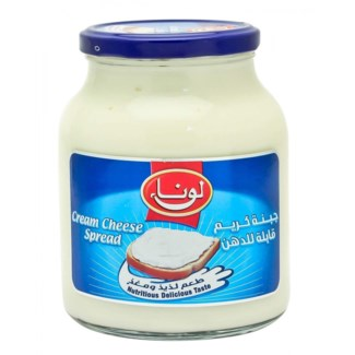 CREAM CHEESE SPREAD 500GRx6