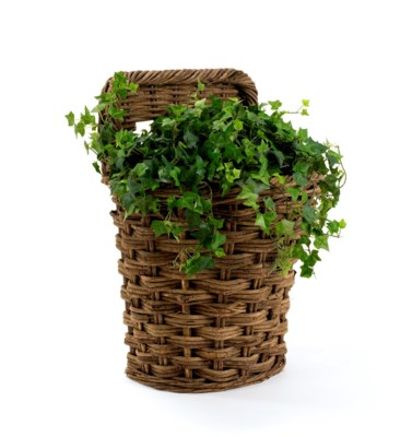 Montana Mountain Wall Basket