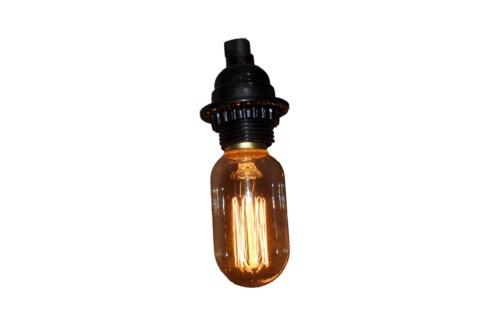 5 inchSquirrel Cage Light Bulb