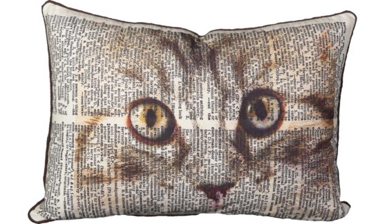 Cat Eye Pillow