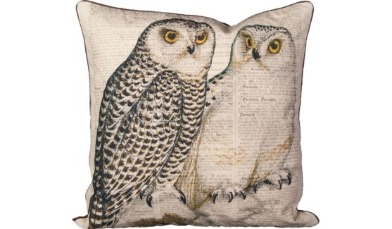 Twin Owl Pillow