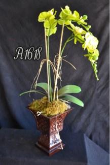 GREEN PHAELANOPSIS ORCHID ARRANGEMENT