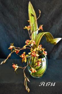 MINI TIGER ORCHID IN WATER