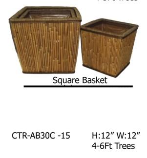 CTR-AB30C