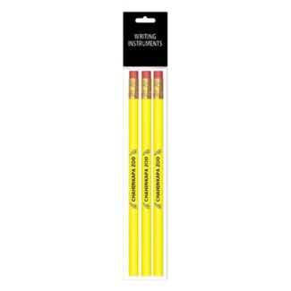 3-Pack 1 Color Wood Pencils