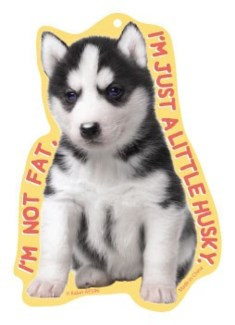 Im not fat Im a little husky Air Freshener Vanilla