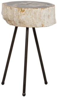 Natura Side Table, Metal and Petrified Wood