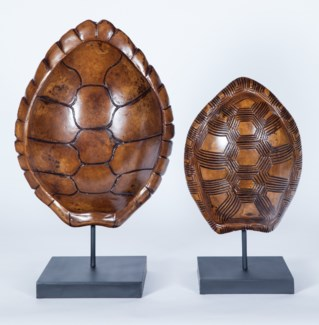 Large Turtle Shell Sculpture  w/ Stand in Amalfi Finish