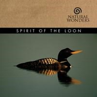SPIRIT OF THE LOON