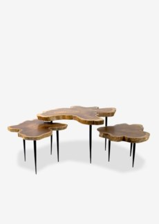 (SP) (8909L)Teakwood freeform top table with metal pin base - Set of 3 (23.6x23.6x16)..Material/Colo