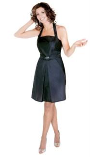 Pleated Skirt Apron NYLON Water Resist