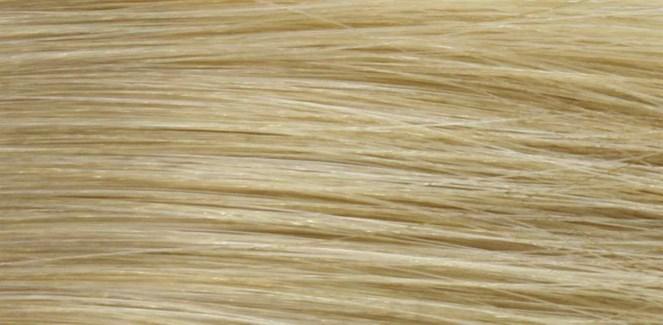90ml 10N(10/0)Vry Lgt Nat Blonde LNZ
