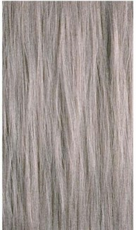 90ml 10CB Cool Beige Blond PM