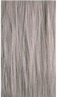 90ml 10CB Cool Beige Blond PM