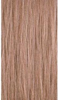 90ml 10WB Lightest Warm Blond