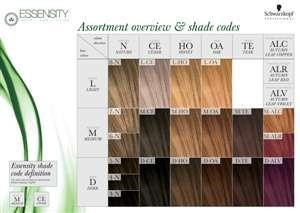 $ NEW Essensity Color Wall Chart