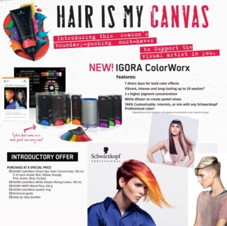 NEW Igora ColorWorx Intro MJ16