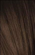 4-6 Tamarind Royal Color