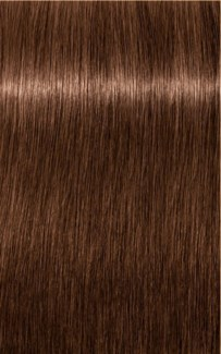 NEW B-6 Brown Chocolate Color HIGH P FP