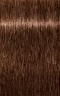 $BF     $ B-6 Brown Chocolate Color HIGH
